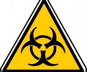 La chaîne de transmission : fil rouge de l'évaluation et de la prévention des risques biologiques