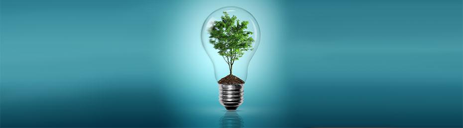 Environnement et énergie: quels défis, quelles attitudes génération par génération?