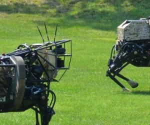 Des robots quadripèdes tout terrain