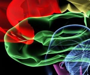 Le cerveau humain simulé sur ordinateur