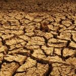 Climat: les géants de l'énergie ont dépensé 1 milliard de dollars en lobbying depuis la COP21 (rapport)