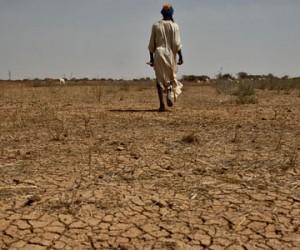 COP21 : les 100 milliards de dollars de la discorde