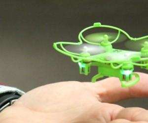 Ces objets volants qui miment l'insecte