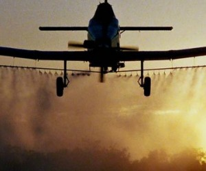 pesticides1024