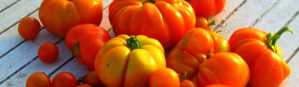 tomates1024
