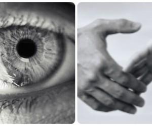Odorat, vue, toucher... Peut-on réparer les 5 sens ?