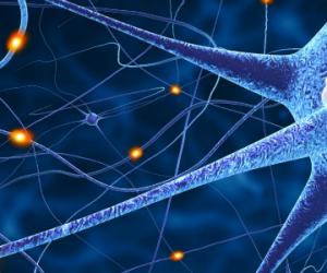 30 petits neurones unis contre la douleur