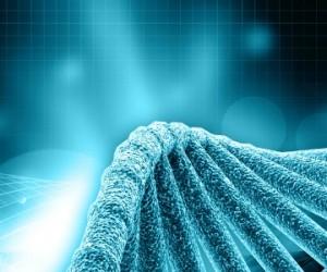 Les nouveaux OGM en débat !