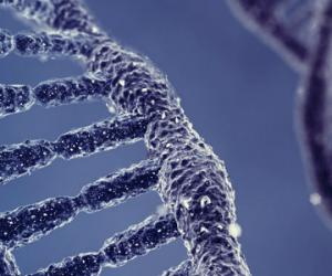 L'ADN et le quartz pour stocker nos données pour l'éternité