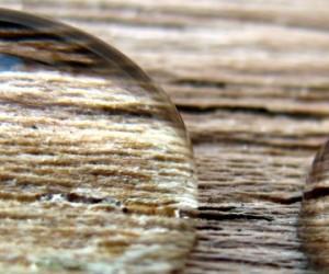 Le bois, un biopolymère composite imprimable en 3D