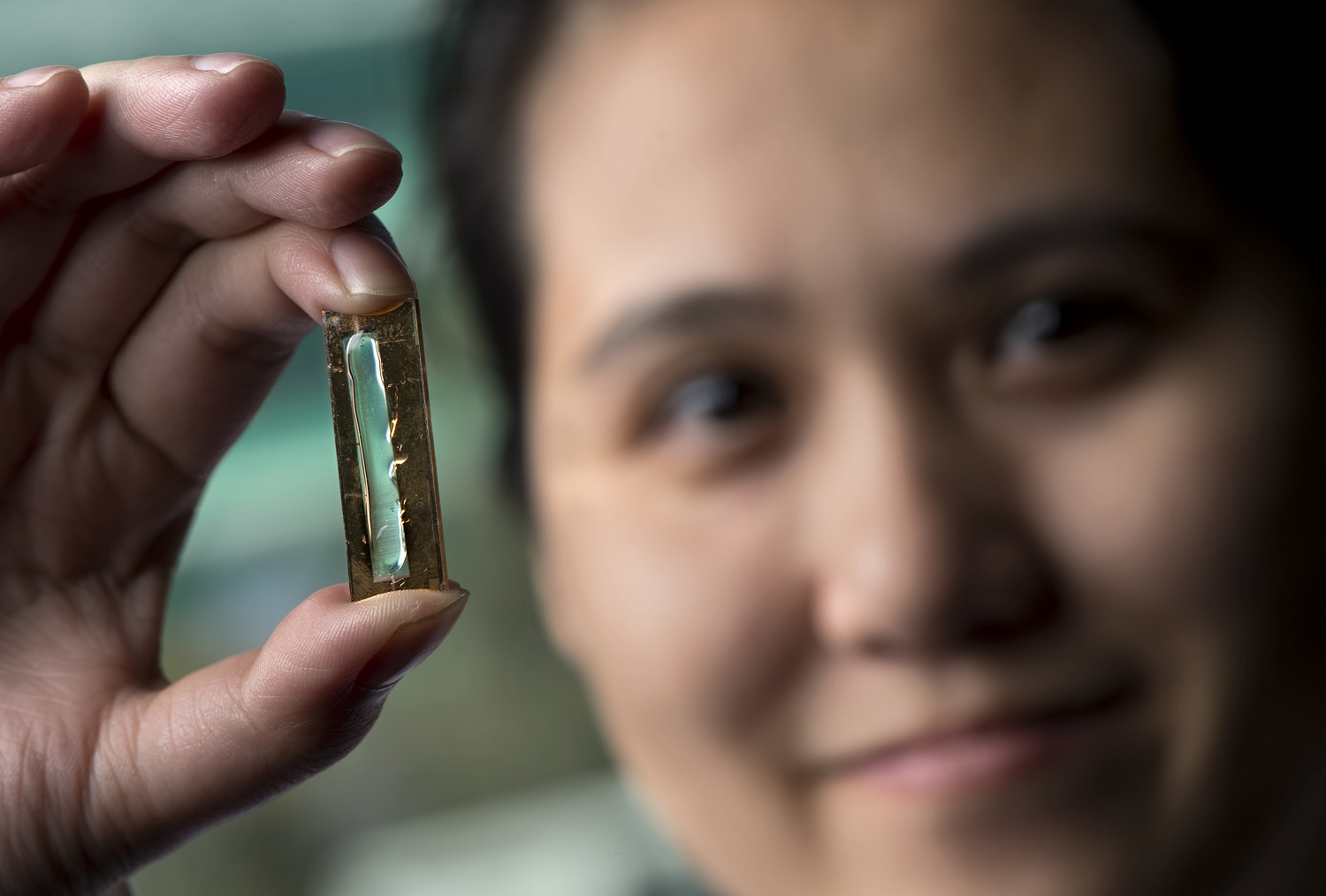 UCI chemist Reginald Penner and doctoral student Mya Le Thai, shown, have developed a nanowire-based battery technology that allows lithium ion batteries to be recharged hundreds of thousands of times. Steve Zylius/UCI