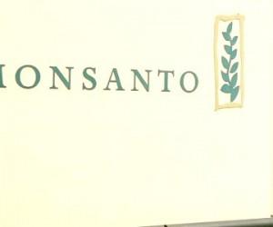 France: Monsanto aurait secrètement fiché des personnalités en fonction de leur position sur le glyphosate (média)
