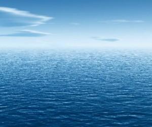 La croissante désoxygénation des océans menace la biodiversité