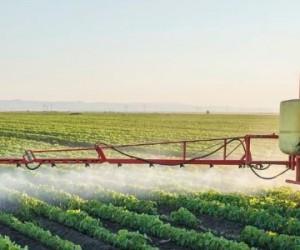 Glyphosate : une bataille entre experts, lobbies et ONG