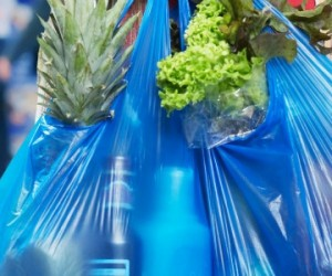 La fin des sacs plastique... ou pas