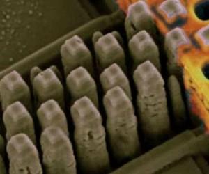 Puces photoniques et bandes magnétiques : vers un stockage éternel