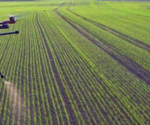 Les drones vont-ils révolutionner l'agriculture ?