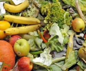 Des déchets alimentaires pour produire du graphite et de l'hydrogène