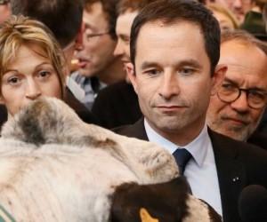 Présidentielle: des candidats timides sur l'agriculture