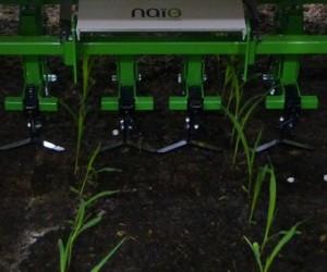 Naïo Technologies robotise le désherbage !