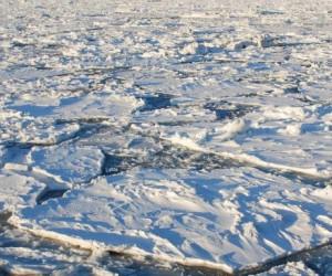 L'Arctique est contaminée par les micro-plastiques !