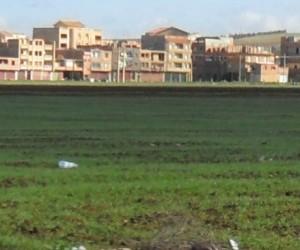 Les terres agricoles disparaissent à nouveau sous le béton !