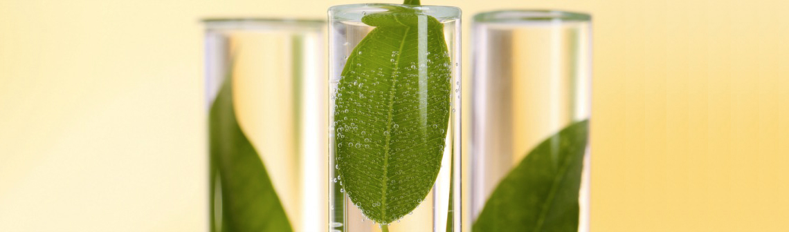 chimie-verte-1140-en-tant-qu'objet-dynamique---1