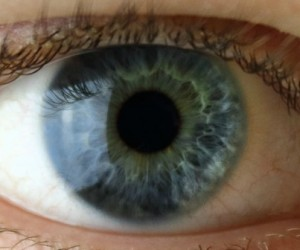 yeux-1140