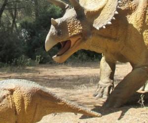 dinosaures-1140