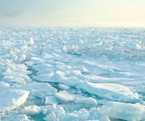 L'Affaire du siècle dépose une requête contre l'État au nom de la justice climatique