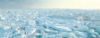 Action climatique: Arabie saoudite et USA en queue de peloton (rapport)