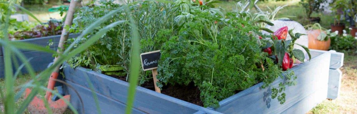 Planter des sacs pour faire pousser son potager !