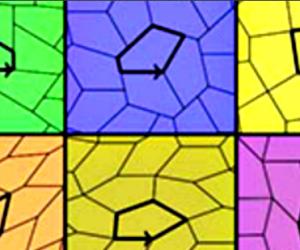 Il n'existe que 15 pavages pentagonaux possibles