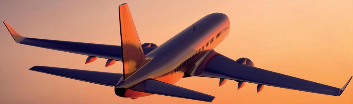 Faire voler des avions avec des biocarburants ?