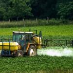 Un nouvel herbicide d'origine naturelle