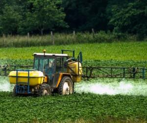 Bayer: le nombre de requêtes visant le glyphosate aux Etats-Unis explose à 42.700 (groupe)