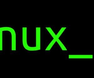 Linux : un maillon essentiel pour l'informatique mondiale