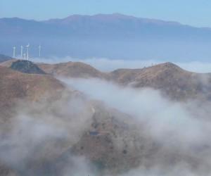 Comment les prix des énergies renouvelables ont-ils pu tomber si bas ?
