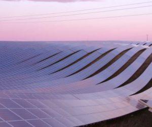Le photovoltaïque de grande taille est compétitif en France, estime la CRE