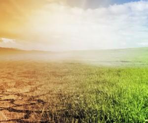 Météo-France publie les nouvelles projections climatiques de référence pour la France