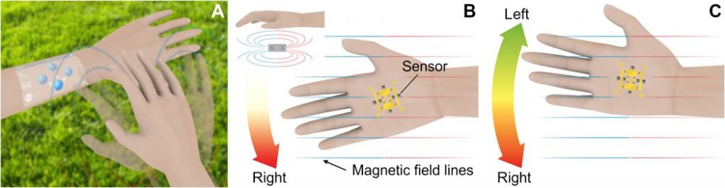 application peau magnétique