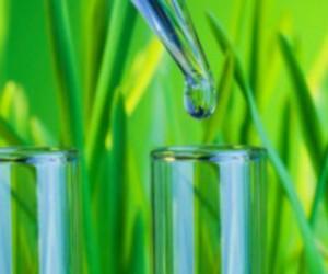 Les nanotechnologies aussi peuvent se mettre au vert