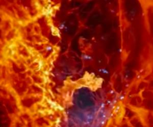 Revue du web #114 : les 10 vidéos scientifiques les plus étonnantes du mois
