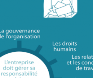 Responsabilité sociétale : normes et bonnes pratiques