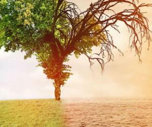 Les modèles climatiques actuels pourraient sous-estimer les changements climatiques à long terme