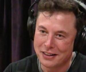 Elon Musk pleure en évoquant la crise écologique dans un podcast avec l'animateur Joe Rogan