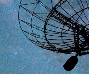 Agroalimentaire : les ondes radio éradiquent les nuisibles
