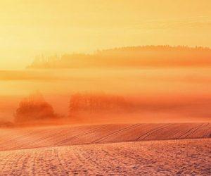 La sécurité alimentaire au défi du réchauffement: le rapport du Giec adopté
