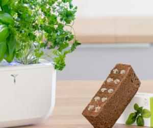 Potager Exky : l'innovation dans votre cuisine