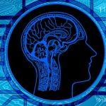 Une intelligence artificielle bon marché?